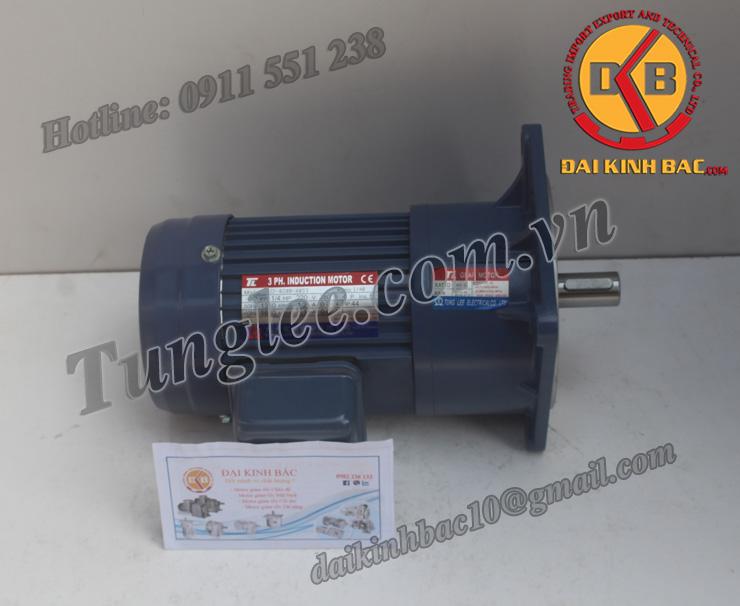 Hình ảnh motor Tunglee mặt bích PF18-0100-20S3