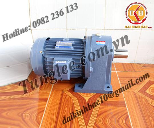 Motor Tunglee 0.1KW PL18-0100-15S3