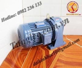 Motor Tunglee 0.1KW PL18-0100-20S3