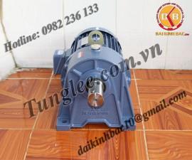 Motor Tunglee 0.1KW PL18-0100-25S3