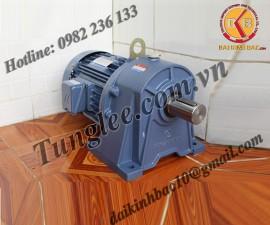Motor Tunglee 0.1KW PL18-0100-30S3