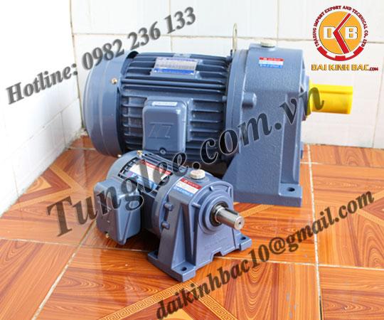 Motor Tunglee 0.1KW PL22-0100-100S3