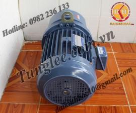 Motor Tunglee 0.1KW PL22-0100-60S3