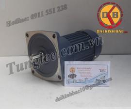 Tunglee  PF18-0100-60S3