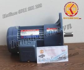 Tunglee  PF18-0200-25S3