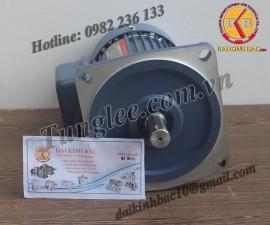 Motor Tunglee 0.75KW PF28-0750-15S3