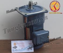 Motor Tunglee 0.75KW PF28-0750-25S3