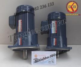 Motor Tunglee 0.75KW PF28-0750-5S3