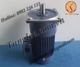 Motor Tunglee 3.7KW PF50-3700-30S3