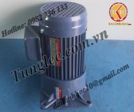 Motor Tunglee 3.7KW PF50-3700-40S3