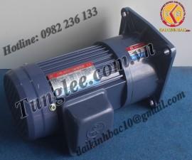 Motor Tunglee 3.7KW PF50-3700-60S3