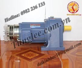 Motor Tunglee 0.2KW PL22-0200-100S3