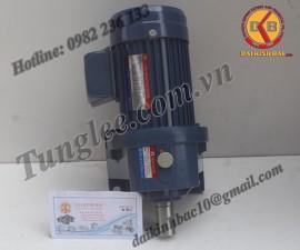 Motor Tunglee 0.4KW PL22-0400-25S3