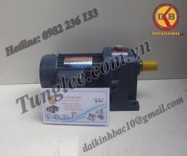 Motor Tunglee 0.2KW PL28-0200-120S3