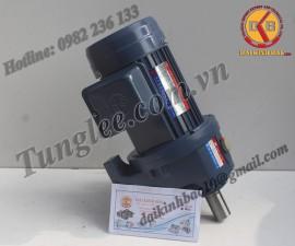 Motor Tunglee 0.2KW PL28-0200-180S3