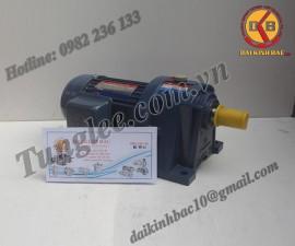 Motor Tunglee 0.2KW PL28-0200-200S3